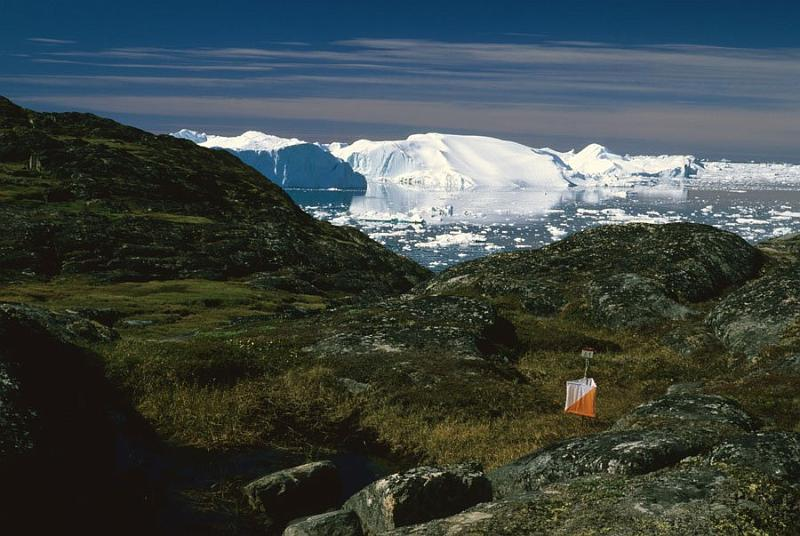 Orienteering control point in Greenland